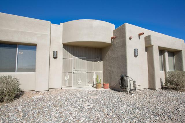 6987 E Cactus Patch Way, Sahuarita, AZ 85629 (#21801998) :: Long Realty Company