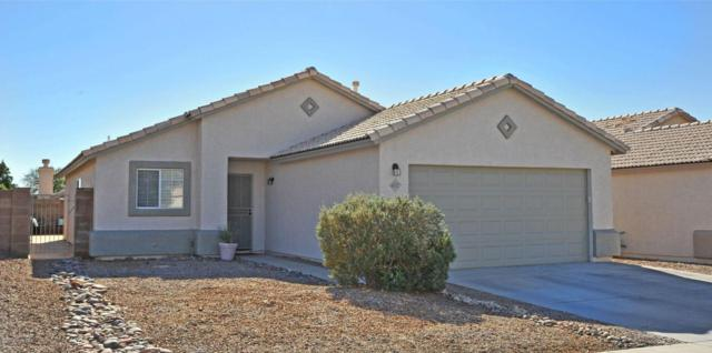 4487 W Holly Berry Way, Tucson, AZ 85741 (#21802208) :: Long Realty Company
