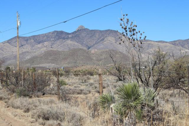 S Bascom Trail #55, Willcox, AZ 85643 (#21802413) :: My Home Group - Tucson