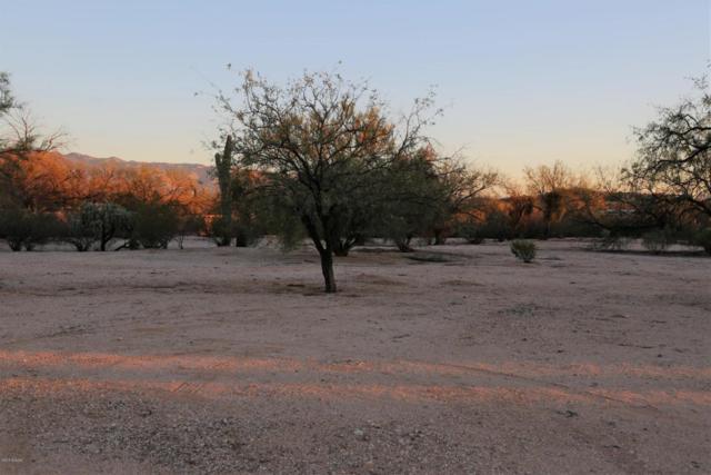 9700 E Walnut Tree Drive, Tucson, AZ 85749 (#21802424) :: Realty Executives Tucson Elite