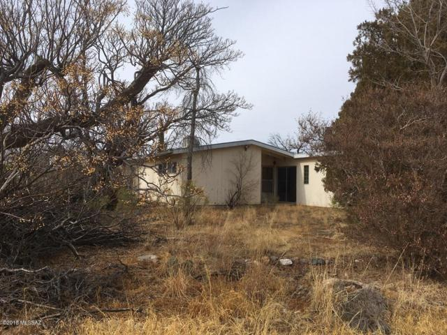 323 N Ford Street, Pearce, AZ 85625 (#21802469) :: Long Realty Company