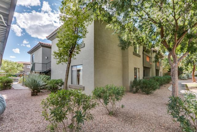 5751 N Kolb Road #8102, Tucson, AZ 85750 (#21802552) :: Long Realty Company