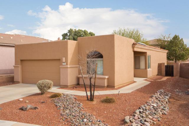 10461 S Stampede Ranch Court, Vail, AZ 85641 (#21802558) :: The Josh Berkley Team