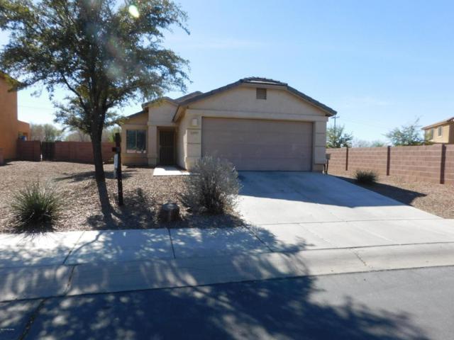 12843 N Pocatella Drive, Marana, AZ 85653 (#21802840) :: RJ Homes Team