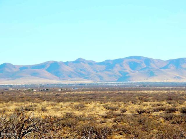 14060 S Olivar Drive #16, Pearce, AZ 85625 (#21803159) :: RJ Homes Team