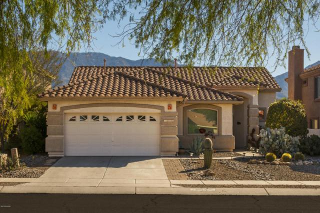 13536 N Wide View Drive, Oro Valley, AZ 85755 (#21803464) :: Long Realty - The Vallee Gold Team