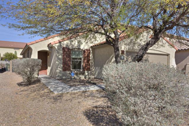 66 W Calle Sauco, Sahuarita, AZ 85629 (#21803487) :: The Josh Berkley Team
