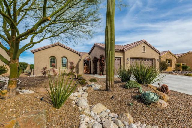 31907 S Bighorn Drive, Oracle, AZ 85623 (#21803710) :: RJ Homes Team