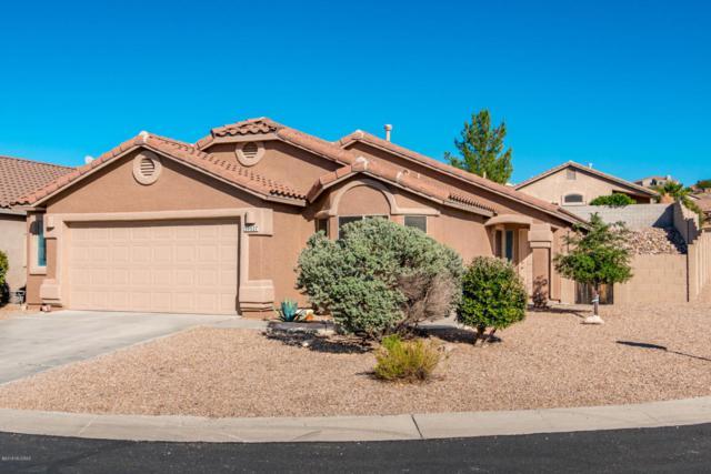 39527 S Old Arena Drive, Tucson, AZ 85739 (#21803949) :: RJ Homes Team