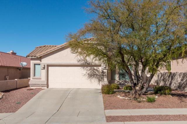 60450 E Blackcrest Loop, Tucson, AZ 85739 (#21803955) :: RJ Homes Team