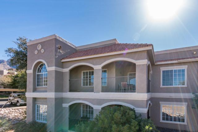 1500 E Pusch Wilderness Drive #11202, Oro Valley, AZ 85737 (#21804007) :: My Home Group - Tucson