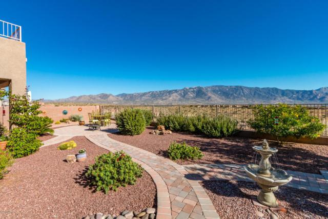 60547 Eagle Ridge Drive, Tucson, AZ 85739 (#21804050) :: Long Realty Company