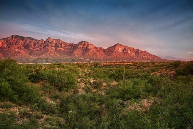 96 W Mountain Sage Drive, Oro Valley, AZ 85755 (#21804138) :: Long Realty Company