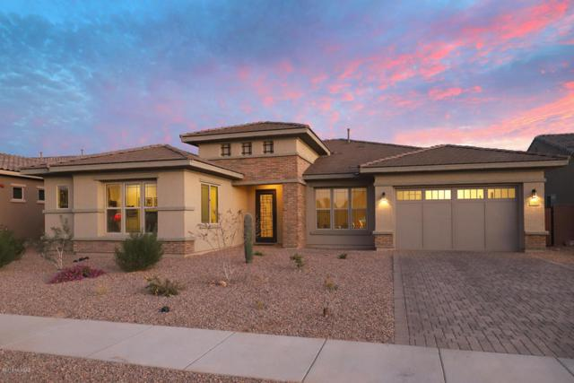 13462 N Silver Cassia Place, Tucson, AZ 85755 (#21804154) :: Gateway Partners at Realty Executives Tucson Elite