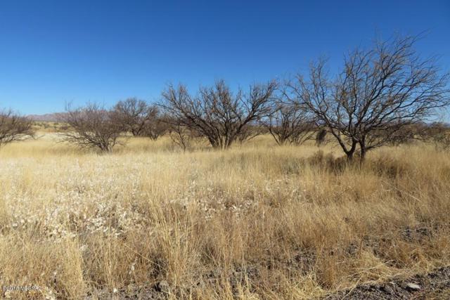 W Cactus Blossom Drive #798, Benson, AZ 85602 (#21804285) :: The KMS Team