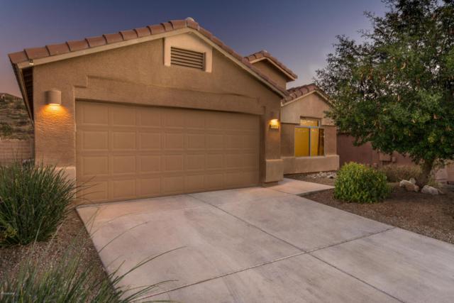 60891 E Silky Mane Drive, Tucson, AZ 85739 (#21804607) :: RJ Homes Team