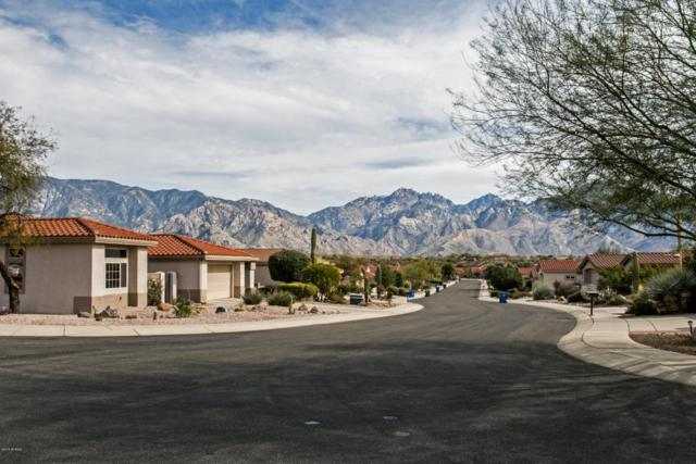 13865 N Sutherland Wash Way, Oro Valley, AZ 85755 (#21804783) :: RJ Homes Team