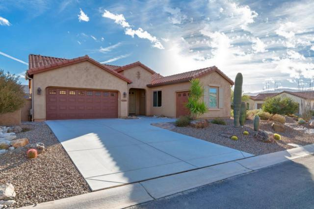 32481 S Sandpiper Place, Oracle, AZ 85623 (#21804805) :: My Home Group - Tucson