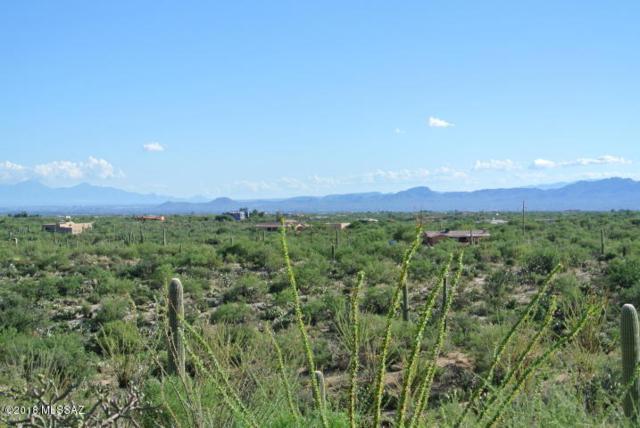 14170 N Gibson Trail, Tucson, AZ 85755 (#21804889) :: RJ Homes Team
