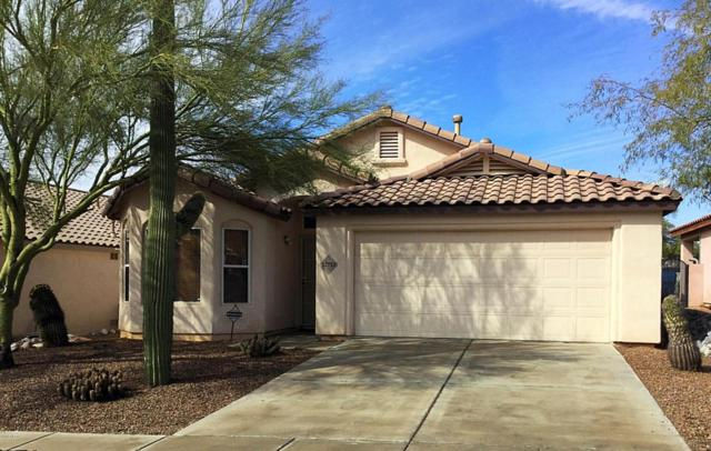 12713 N Wild Indigo Drive, Marana, AZ 85658 (#21804932) :: Gateway Partners at Realty Executives Tucson Elite