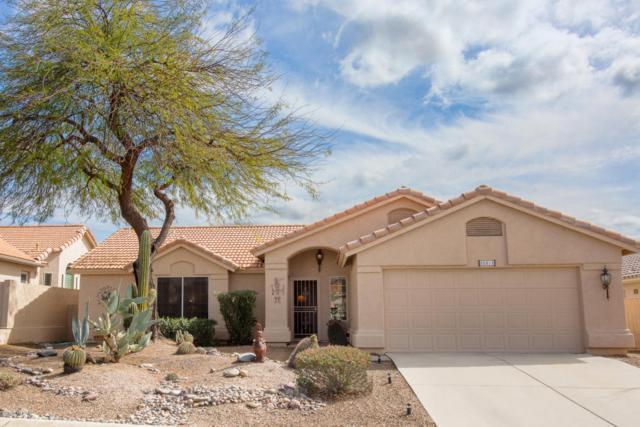 38215 S Rolling Hills Drive, Tucson, AZ 85739 (#21804983) :: RJ Homes Team