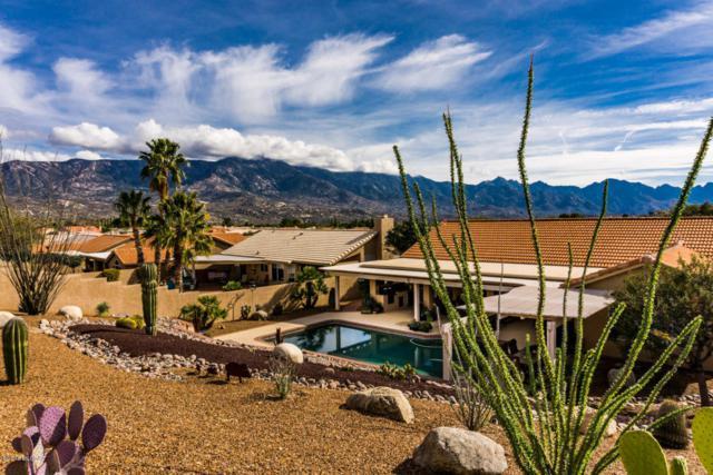 63844 E Whispering Tree Lane, Tucson, AZ 85739 (#21805007) :: RJ Homes Team