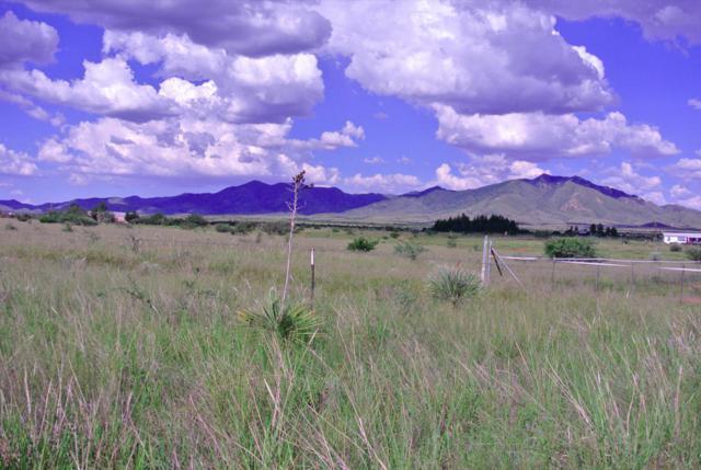 22051 E Mountain Rain Trail A, Elgin, AZ 85611 (#21805039) :: RJ Homes Team