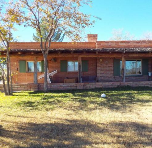 461 N Hamilton Road, Willcox, AZ 85643 (#21805179) :: Long Realty - The Vallee Gold Team
