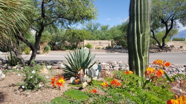 1033 E Cave Canyon Place #154, Green Valley, AZ 85614 (#21805279) :: The Local Real Estate Group | Realty Executives