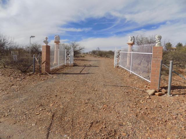 Address Not Published, Tubac, AZ 85646 (#21805368) :: Long Realty Company