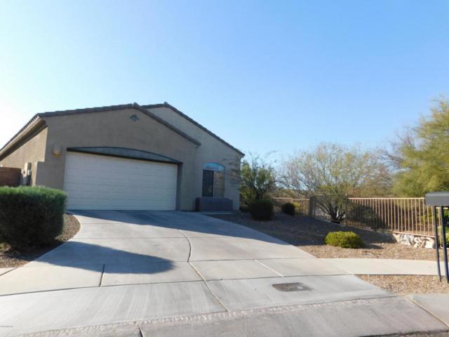 2330 S Dovestar Trail, Tucson, AZ 85748 (#21805395) :: The Josh Berkley Team