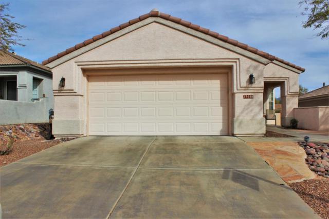13558 N Holly Grape Drive, Marana, AZ 85658 (#21805428) :: Keller Williams