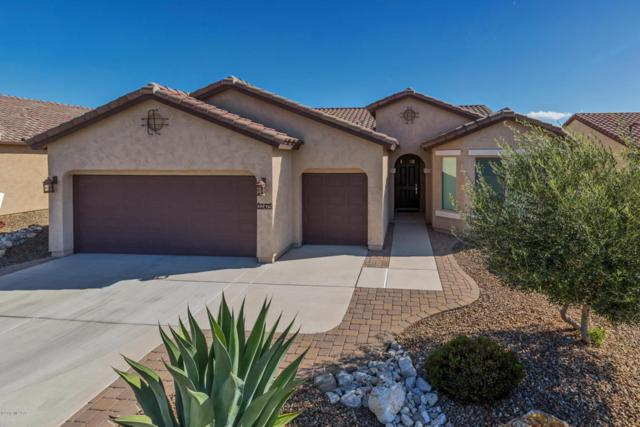 32475 S Addax Place, Oracle, AZ 85623 (#21805450) :: Long Realty Company