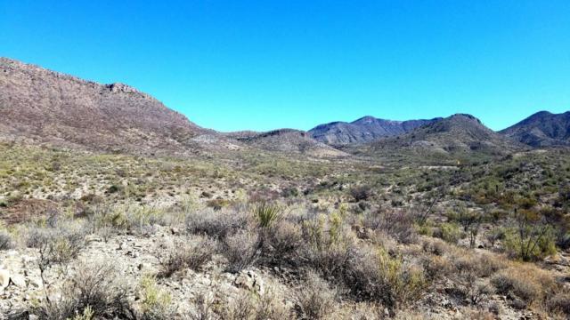 17373 S Empire View Place, Vail, AZ 85641 (#21805455) :: Keller Williams