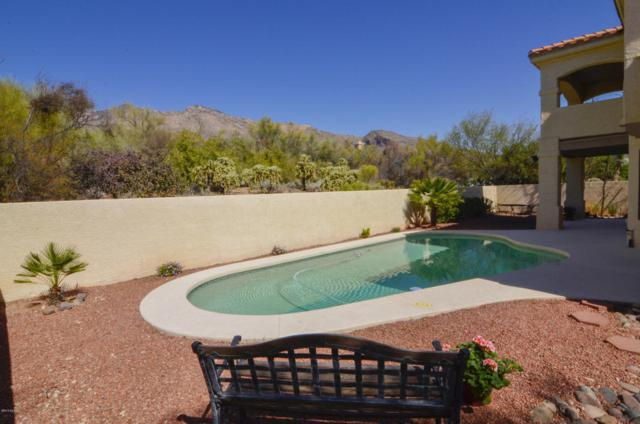 6381 N Calle Campeche, Tucson, AZ 85750 (#21805506) :: Long Realty - The Vallee Gold Team