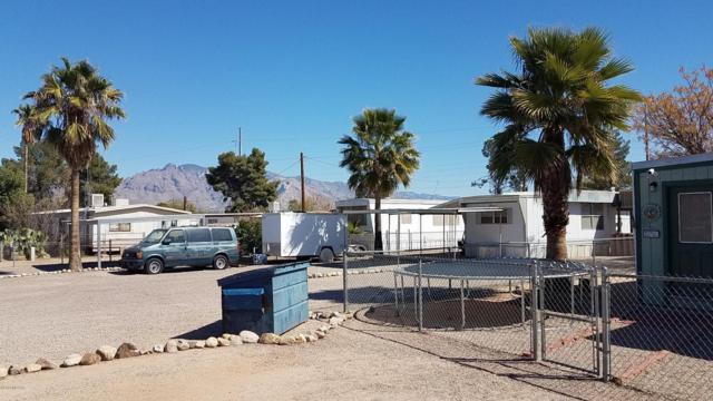 4122 N Palm Grove Drive, Tucson, AZ 85705 (#21805600) :: Keller Williams