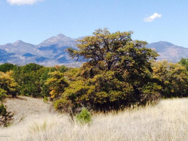 Dry Canyon Road #3, Patagonia, AZ 85624 (#21806220) :: Long Realty Company