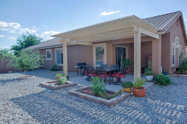 60620 E Flank Strap Drive, Tucson, AZ 85739 (#21806638) :: Long Realty Company