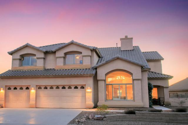 40046 S Mountain Shadow Drive, Saddlebrooke, AZ 85739 (#21806778) :: Long Realty Company