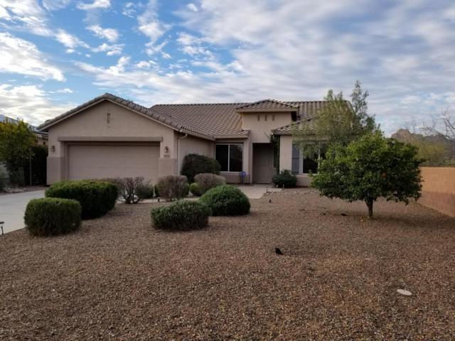 9841 N Sunflower Park Drive, Tucson, AZ 85743 (#21806888) :: Long Realty Company