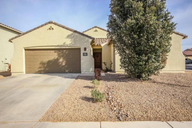 11038 W Motes Drive, Marana, AZ 85653 (#21806894) :: The Josh Berkley Team