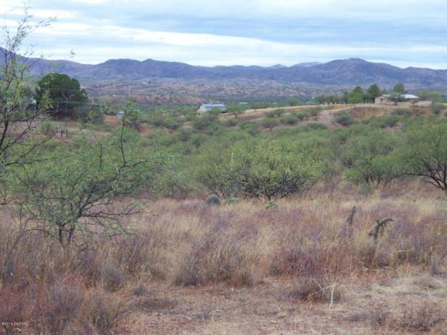 14959 W Crooked Sky #0, Arivaca, AZ 85601 (#21807076) :: Long Realty - The Vallee Gold Team