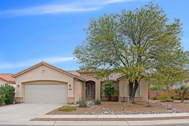 9864 N Scarlet Ranges Lane, Tucson, AZ 85743 (#21807180) :: The Josh Berkley Team