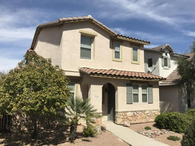 2744 N Neruda Lane, Tucson, AZ 85712 (#21807292) :: Long Realty - The Vallee Gold Team
