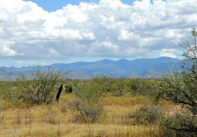TBD S Camino De Cristo Avenue #15, Pearce, AZ 85625 (#21807525) :: Long Realty Company