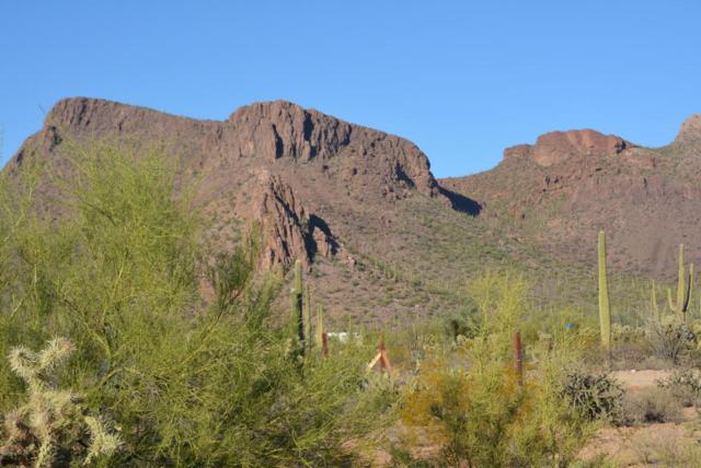 0 N Tula Lane, Tucson, AZ 85743 (#21807640) :: Long Realty Company