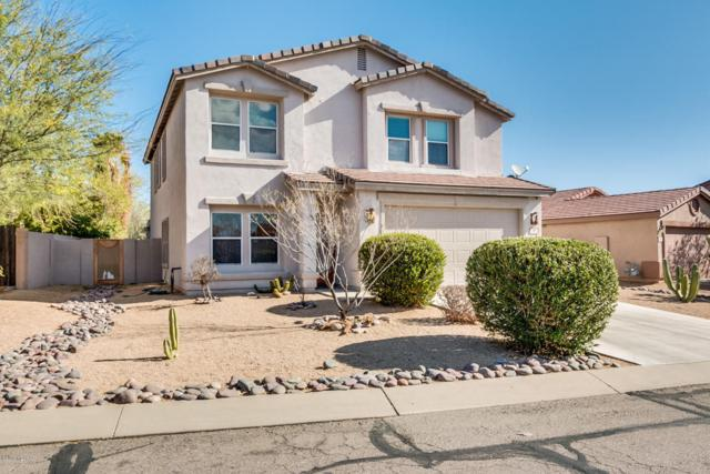 319 E Western Hemlock Place, Sahuarita, AZ 85629 (#21807809) :: Long Realty Company
