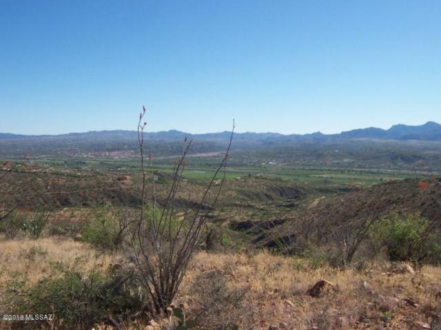 302 Camino Arenosa #8, Rio Rico, AZ 85648 (#21807824) :: Tucson Real Estate Group