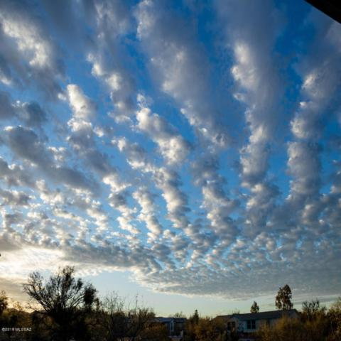 13520 E Crazy Horse Trail, Vail, AZ 85641 (#21807935) :: My Home Group - Tucson