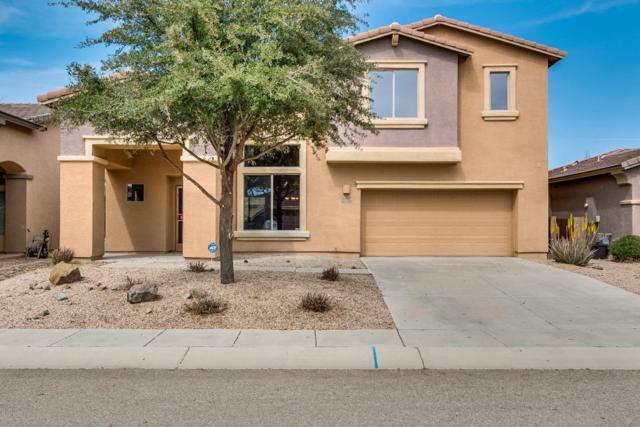 857 E Deer Spring Canyon Place, Sahuarita, AZ 85629 (#21808056) :: Long Realty Company